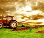 Πρόγραμμα οικονομικής ενίσχυσης νέων αγροτών