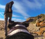 Δείτε το κυνήγι από την οπτική γωνία του σκύλου σας