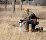 Περισσότερα χάδια στον σκύλο σας