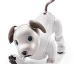 O ρομποτικός σκύλος της Sony επιστρέφει
