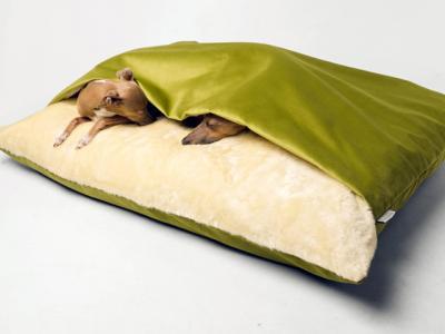 Ένα κρεβάτι σκύλου γεμάτο πολυτέλεια