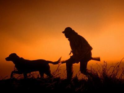 Απαγορεύσεις κυνηγιού στην Εύβοια
