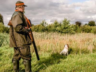 Εκδόθηκε το ΦΕΚ για τις άδειες θήρες και την κυνηγετική δραστηριότητα