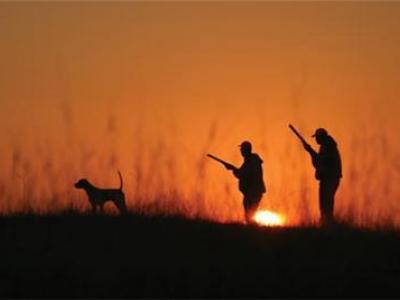 Πάρτε μέρος στη δημοσκόπηση για το κυνήγι
