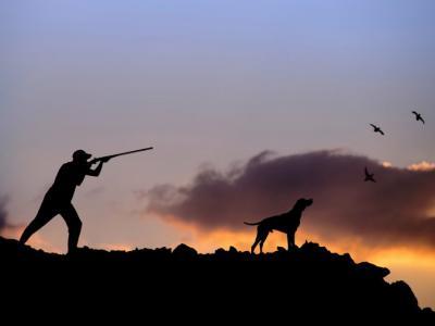 Σύλληψη για παράνομο κυνήγι στην Κρήτη