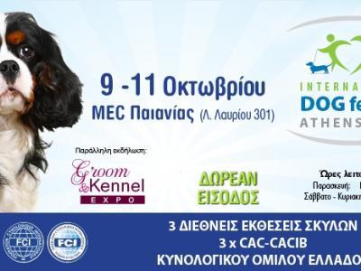Όλα έτοιμα για το International Dog Festival