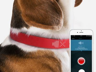 Επικοινωνία με τον σκύλο σας με το Kyon Tracker