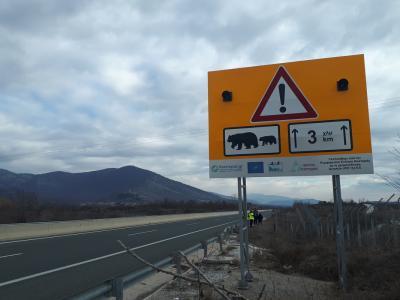 Καινοτομία εναντίον των τροχαίων με άγρια ζώα