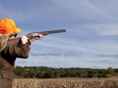 Απομακρυσμένη υποβολή αιτήσεων για άδειες οπλοφορίας