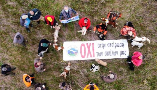 Κ.Σ. Αμπελοκήπων: Όχι στην υποχρεωτική στείρωση σκύλων